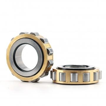 2.756 Inch | 70 Millimeter x 4.921 Inch | 125 Millimeter x 1.22 Inch | 31 Millimeter  NSK 22214EAC4  Spherical Roller Bearings